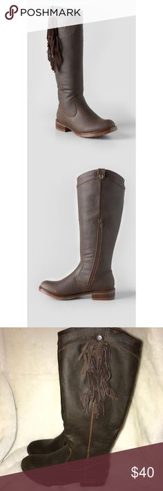 """🆕Brown fringe riding boots Super cute brown vegan leather fringe riding boots. Real leather feel.  ❗️Please no low ball offers.❗️ ❗️Bundles always get a discount.❗️ Condition: NWOT Measurements- Shaft height: 14"""" Calf circumference: 15""""  Smoke free home but I have a small dog.  Thanks for checking out my closet! ❤️ Francesca's Collections Shoes"""
