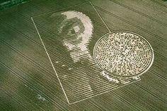 crop circles | Crop Circles Señales... Huellas?