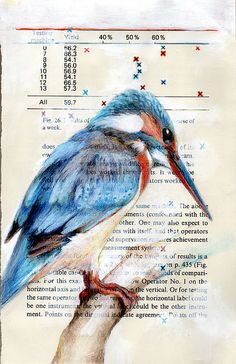 Pennsylvania artist and designer Paula Swisher draws birds on the pages of old engineering and science manuals. Watercolor Sketch, Watercolor Bird, Newspaper Drawing, Book Page Crafts, Bird Artwork, Nature Drawing, Stencil Art, Stencils, Nature Journal