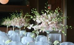pink dendrobium orchids - getting away from a 'round' look