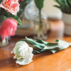 Projekt Blume Napkins, Tableware, Kitchen, Instagram, Videos, Projects, Flowers, Dinnerware, Cooking