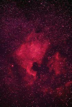 The North American Nebula and Pelican Nebula in Cygnus.