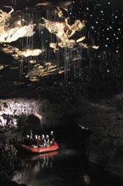 Glow Worm Cave - New Zealand - Visitors enjoy a serene raft ride under glow worms. Lots of pictures.