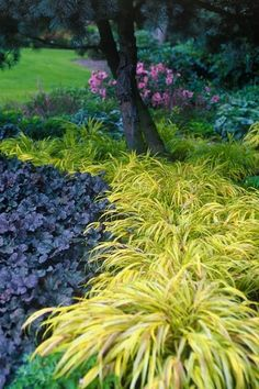 I have come to absolutely LOVE a shade garden. Shade gardens offers you a feeling of serenity. Maybe that makes us look a little closer for the details. It's not all about the big picture. Ah, wisdom…MoreMore  #LandscapingProjects