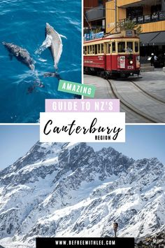 Looking for the best places to travel in New Zealand? Look no further than an adventure travel experience in New Zealand's South Island! There are so many things to see and do there including many hikes, beaches, ski spots, stunning outdoor scenery and more! Learn everything you need to know about Canterbury New Zealand in this article- One of my favourite New Zealand travel destinations! #traveldestinations #newzealandtraveltips #newzealandtravelguide Adventure Bucket List, Life Is An Adventure, Adventure Travel, Lake Wanaka, Lake Tekapo, Canterbury New Zealand, New Zealand Travel Guide, Go Skiing, New Zealand South Island