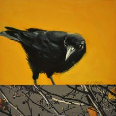 "Art From My Easel.by Jacqueline McIntyre "" I Can't Decide"" Acrylic and Collage… Crow Art, Raven Art, Crow Painting, Painting & Drawing, Bird Paintings, Owl Bird, Pet Birds, Quoth The Raven, Bug Art"