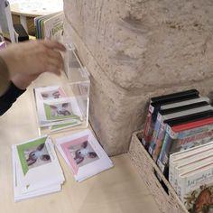 Mes de mayo de 2019, elecciones para elegir el nombre de la mascota del Rincón Infantil de la Biblioteca Pública de Salamanca Casa  de las Conchas
