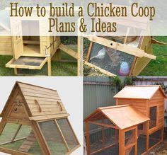 DIY Chicken Coop Plans & Ideas - http://diyforlife.com/diy-chicken-coop-ideas/ - #ChickenCoopPlans, #DiyChickenCoopIdeas