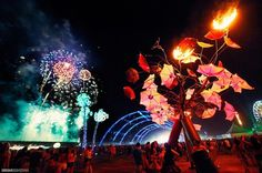 fav locations music festivals other events Electric Daisy Carnival Vegas