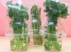 You can even store asparagus, cilantro, or parsley in the fridge for longer with this easy method. Look how cute they look in jars! | These Five Grocery Hacks Will Make Your Groceries Last Longer