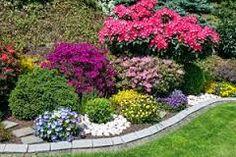Výsledek obrázku pro rabaty kwiatowe przydomowe