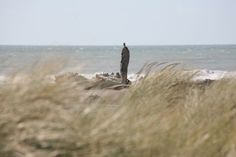 A man staring longingly out into the ocean, or a piece of driftwood wishing he were that man?