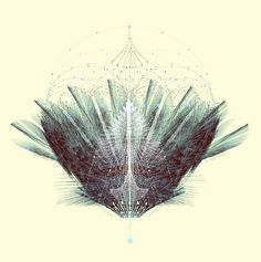 I am so in love with this work. Complexity Graphics: The Feathered Tribe by Tatiana Plakhova