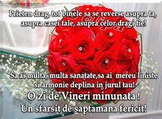 Sorin Leoveanu - Google+