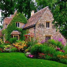 Stone & flora