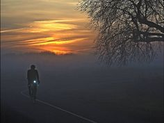 A cyclist rides west along the American River Parkway bike trail near the Capitol City Freeway underpass as the sun rises over foggy Sacramento.  Tim Reese, The Sacramento Bee, via AP