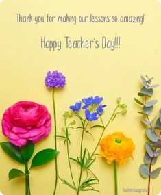 Top 35 Happy Teacher's Day Messages, Cards And Appreciation Quotes For Teacher