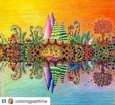 Pikore Adult ColoringColouringColoring BooksJohanna BasfordBook Art ForestsEnchantedPrismacolorEnchanted