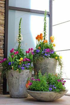 jardineras, decoración patio, maceteros grandes de piedra, combinaciób de petunias púrpura y tulipanes, plantas verdes