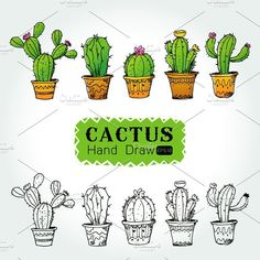 hand drawn Collection of cactuses Best Picture For Cactus crochet For Your Taste You are looking for something, and it is going to tell you exactly what you are looking for, and you didn't find that p Glass Cactus, Cactus Art, Cactus Drawing, Cactus Painting, Cactus Tattoo, Cactus Y Suculentas, Art Graphique, Cacti And Succulents, Cactus Plants