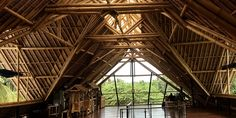 Big Tree Farms: Bamboo & Chocolate Factory