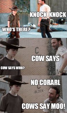 Walking dead - I don't know why I love these