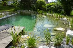 TEICHBAU AXEL DIETERICH - TEICHBAU - Schwimmteiche Swimming Pool Pond, Natural Swimming Ponds, Natural Pond, Swimming Pool Designs, Ponds Backyard, Garden Pool, Backyard Landscaping, Piscine Diy, Pond Water Features