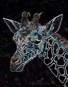 Imagen encontrado en Google Giraffe Illustration, Giraffe Art, Brown Spots, Wild Animals, Animals Beautiful, Tatoos, Horns, Babys, Claire