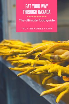 Oaxaca city food guide, your must have experience in Oaxaca, Mexico