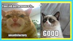 Your job performance is unsatisfactory....GOOD