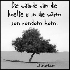 Die waarde van die koelte is in die warm son rondom hom Wise Quotes, Qoutes, Afrikaanse Quotes, Some People Say, Quotes And Notes, More Than Words, Quote Posters, Friendship Quotes, Live Life