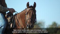 Monter à cheval, c'est aussi savoir se passer de la technique, arrêter de vouloir tout maitriser... Se fier à son instinct, ressentir, et leur faire confiance.