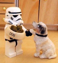 Best friend of stormtrooper. Lego Star Wars.