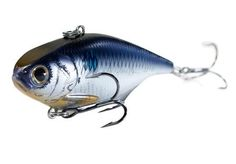 Koppers Gizzard Shad Trap