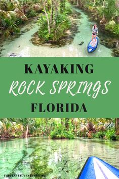 Visiting Orlando in the near future Ditch the long lines and crowds to explore wild Florida Places In Florida, Visit Florida, Florida Vacation, Florida Travel, Travel Usa, Florida Living, Cruise Vacation, Disney Cruise, Vacation Destinations