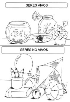 seres vivos y no vivos 1st Grade Science, Kindergarten Science, Science Biology, Anchor Activities, English Activities, Elementary Spanish, Teaching Spanish, Preschool Lesson Plans, Kids Class