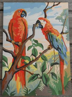 Paint By Number Parrots Vintage Tropical Colorful