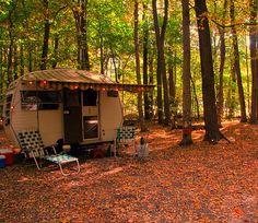 """I've never camped like THIS!  This is The Coopkeeper's """"camping car"""" she named The Squirrel!"""