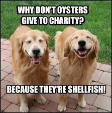 Image result for golden retriever dog jokes
