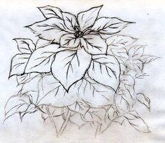Quick Poinsettia Flower Sketch