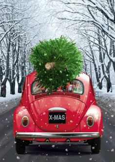 Le plus chaud Photos arbre png Concepts Christmas Truck, Christmas Scenes, Noel Christmas, Winter Christmas, Vintage Christmas, Christmas Crafts, Christmas Games, Christmas Cookies, Christmas Tree Background