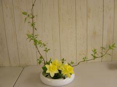 Springtime ikebana - upright moribana with daffodils