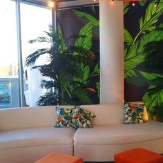 """""""Living large in the Big Apple! What do you think of these larger than life banana leaves?! One of our customers asked if we could make our Banana Leaf print BIG for a party at @thestandard penthouse in #nyc and of course we said YES! 👏 Leo and I adore fun projects like this! I love how it turned out. 💗#removablewallpaper #graduationparty"""" by @sweetpeawalldesign.  #bride #weddingday #weddingdress #weddingphotography #bridal #weddinginspiration #weddingphotographer #groom #свадьба…"""