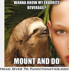 Dirty little sloth