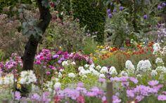 beautiful flower garden wallpaper