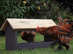 covered chicken feeders rain proof | Rain Cover For Chicken Feeder