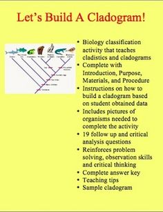 Cladistics is one of the newest trends in the modern classification of organisms. It shows the relationship between different organisms based on the presence or absence of characteristics called derived characters. In this activity, students will look at pictures of 7 different animals to determine if they possess certain derived characters. This data will then be used to build a cladogram.