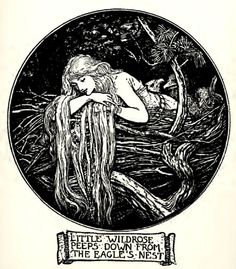 cheveux qui sortent du cercle // Little Wildrose, illustration by Henry Justice Ford, from the Crimson Fairy Book edited by Andrew Lang, 1903 Art Inspo, Kunst Inspo, Fantasy Kunst, Fantasy Art, Art And Illustration, Cartoon Illustrations, Potnia Theron, Fairytale Art, Alphonse Mucha