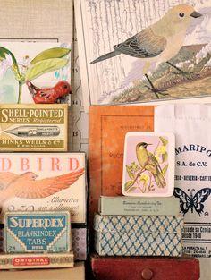 Geninne's boxes and birdies