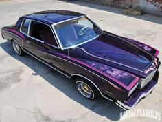 1978 Chevrolet Monte Carlo Open Door Photo 8